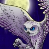 Snowy Owl Book Novel Cover Illustration