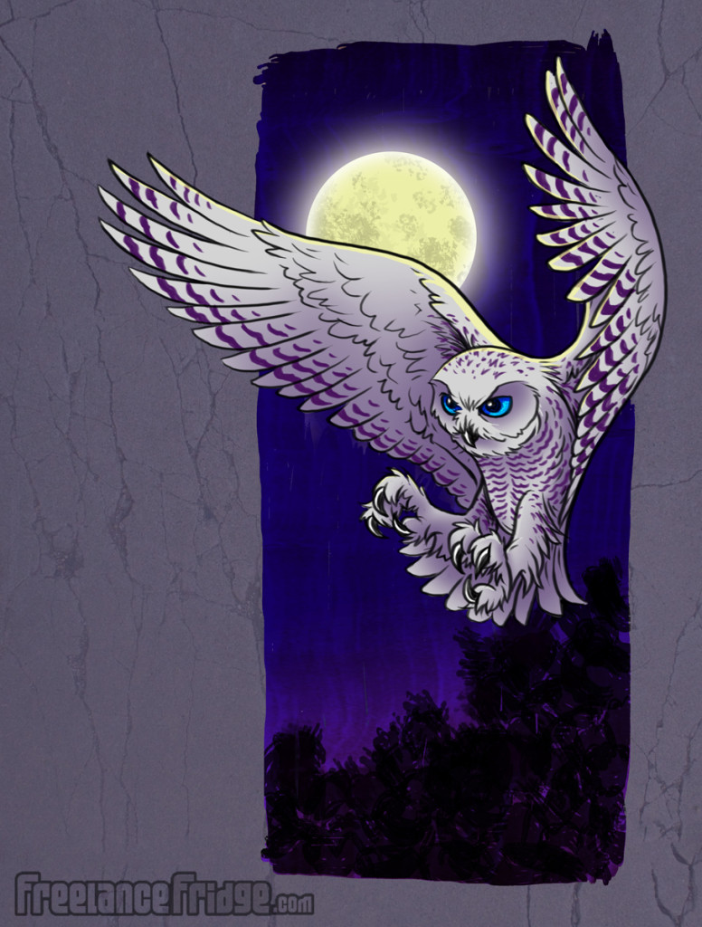 Snowy Owl Book Illustration Artwork
