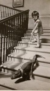 Vintage Photo Gator and Girl walking down stairs