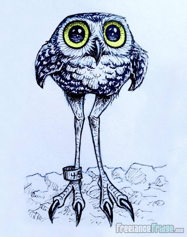 cute long-legged burrowing owl cartoon drawing sketch