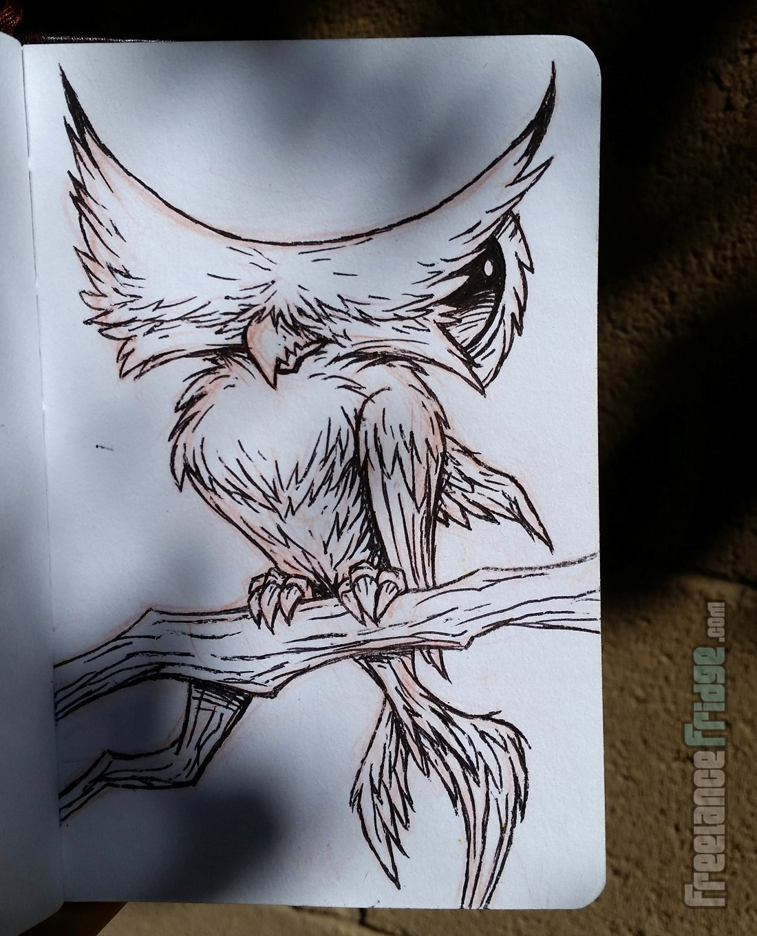 Hammerhead Shark Owl HammerWho Creature Concept Cartoon Inked Drawing Sketch